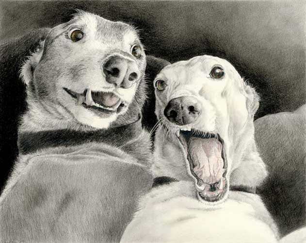"""Dave and Ween"" by Xan Blackburn. Graphite and watercolor on paper"