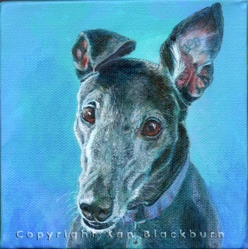 """Darcy"" by Xan Blackburn. Acrylic on canvas panel.  Pet portrait, hound, dog, dog portrait"