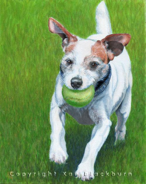 """""""Jilly Bean"""" by Xan Blackburn.  Acrylic on canvas panel.  Terrier, pet portrait"""