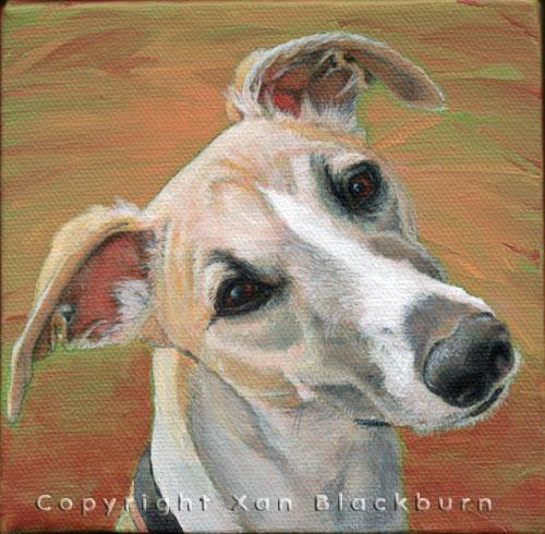 """""""Riley"""" by Xan Blackburn. Acrylic on canvas.  Pet portrait, hound, dog, dog portrait"""