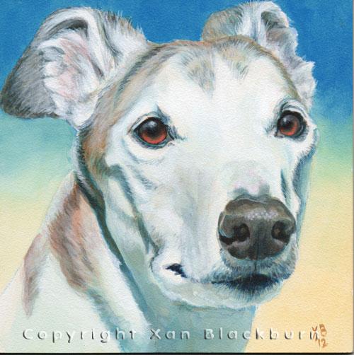 """""""Tex"""" by Xan Blackburn. Acrylic on canvas.  Pet portrait, hound, dog, dog portrait"""