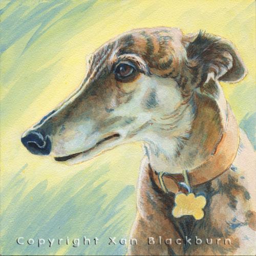 """TipTop"" by Xan Blackburn. Acrylic on canvas.  Pet portrait, hound, dog, dog portrait"