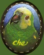 Che, by Xan Blackburn, acrylic on porcelain