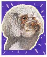 Cornbread, by Xan Blackburn, gouache on gessoed panel