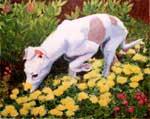 Daisy in the Garden, by Xan Blackburn, acrylic on paper