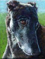 Strider, by Xan Blackburn, acrylic on canvas